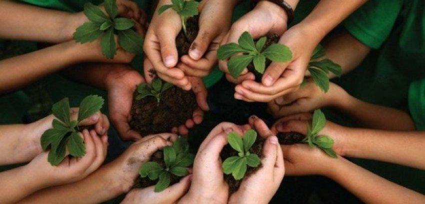Gestão de Meio Ambiente (Implementação)