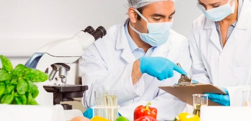 Formação de Auditor Interno do Sistema de Gestão de Segurança Alimentar (On line/Ao Vivo)
